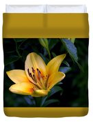 Yellow And Green No. 2 Duvet Cover