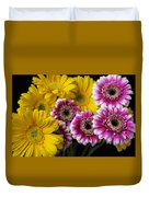 Yellow And Pink Gerbera Daisies Duvet Cover