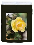 Yellow And Pink Tipped Rose Duvet Cover