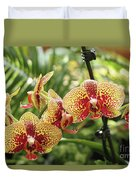 Yellow And Red Spotted Phalaenopsis Orchids Duvet Cover