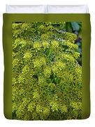Yellow Blossoms Of Green Aeonium In Huntington Desert Garden In San Marino-california  Duvet Cover
