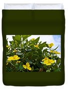 Yellow Poppy Bush Flowers At Pilgrim Place In Claremont-california Duvet Cover