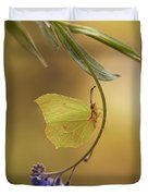 Yellow Butterfly On Blue Forget-me-not Flowers Duvet Cover