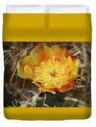 Yellow Cactus Flower On Display Duvet Cover