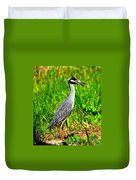 Yellow Crested Night Heron Catches A Fiddler Crab Duvet Cover