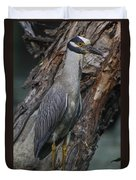 Yellow Crested Night Heron On Log Duvet Cover