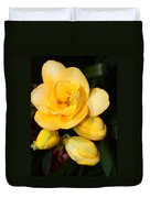 Yellow Crocus Closeup Duvet Cover