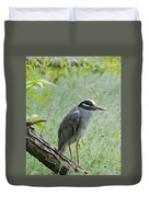 Yellow-crowned Night Heron 1 Duvet Cover