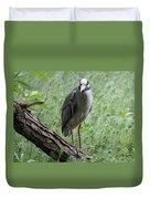 Yellow-crowned Night Heron 2 Duvet Cover