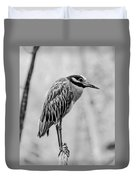 Yellow-crowned Night Heron Black And White Duvet Cover