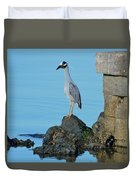 Yellow Crowned Night Heron Rocking It Out Duvet Cover
