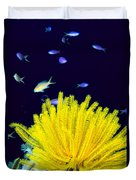 Yellow Feather Star Duvet Cover
