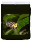Yellow Glassy Tiger Butterfly Duvet Cover