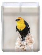 Yellow Headed Blackbird #4 Duvet Cover