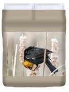 Yellow Headed Blackbird #7 Duvet Cover