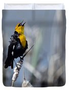 Yellow Headed Blackbird Duvet Cover