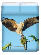 Yellow-headed Caracara Milvago Duvet Cover