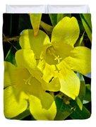 Yellow Jessamine At Pilgrim Place In Claremont-california Duvet Cover