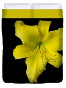 Yellow Lily Flower Black Background Duvet Cover