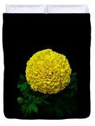 Yellow Marigold Flower On Black Background Duvet Cover