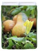 Yellow Pumpkin Flower Closeup Garden Autumn Season Duvet Cover