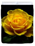 Yellow Rose 4 Duvet Cover