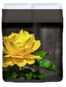 Yellow Rose Of Los Gatos Duvet Cover