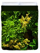 Yellow Sedum At Pilgrim Place In Claremont-california Duvet Cover