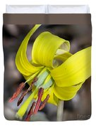 Yellow Trout Lily Duvet Cover