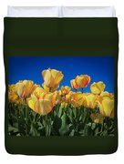 Yellow Tulips With An Orange Flare Duvet Cover