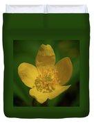 Yellow Wood Anemone 1 Duvet Cover