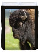 Yellowstone Bison Portrait Duvet Cover