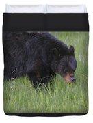Yellowstone Black Bear Grazing Duvet Cover