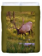 Yellowstone Bull Duvet Cover