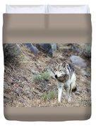 Yellowstone Grey Wolf Duvet Cover