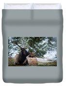 Yellowstone Wild Duvet Cover