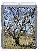 Yellowwood Tree In Winter Duvet Cover