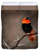 Yikes Spikes - Red Bishop Weaver Bird Duvet Cover
