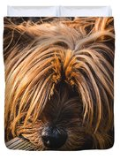 Yorkshire Terrier Biting Wood Duvet Cover