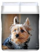 Yorkshire Terrier Dog Pose #3 Duvet Cover