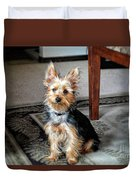 Yorkshire Terrier Dog Pose #6 Duvet Cover