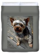Yorkshire Terrier Puppy Duvet Cover