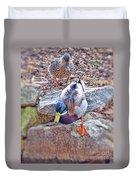 You Go First - Male And Female Mallard Ducks Duvet Cover