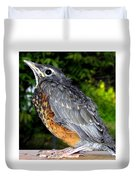 Young American Robin Duvet Cover