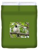 Young Black-capped Chickadee Duvet Cover