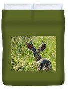 Young Black-tailed Deer With New Antlers Duvet Cover