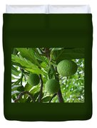 Young Breadfruit Duvet Cover