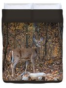 Young Deer Duvet Cover