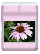 Young Echinacea Bloom Duvet Cover