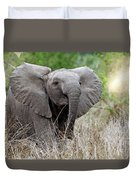 Young Elephant In The Light, Africa Wildlife Duvet Cover